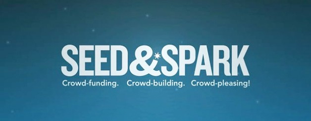 What If Seed&Spark Is Successful?
